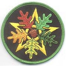 Oak Leaf Pentagram iron-on patch 3